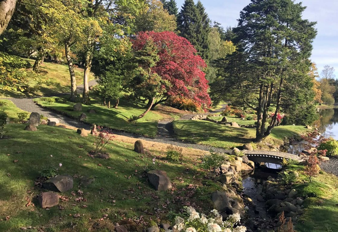A colour image of the Japanese Garden Restoration Project Perthshire supported by The Ellis Campbell Foundation 2017-October
