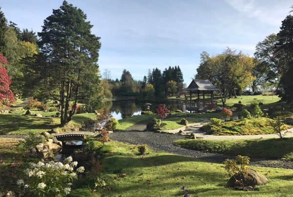A colour image of the Japanese Garden Restoration Project Perthshire supported by The Ellis Campbell Foundation October 2017-2